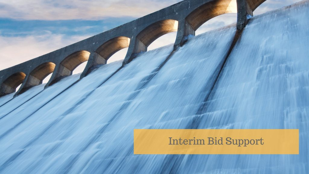 interim bid writer